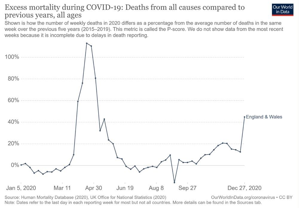 excess deaths graph.jpg